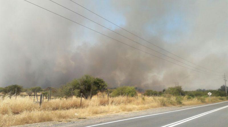 Alerta Amarilla para las comunas de Quinta de Tilcoco y La Estrella por incendios forestales